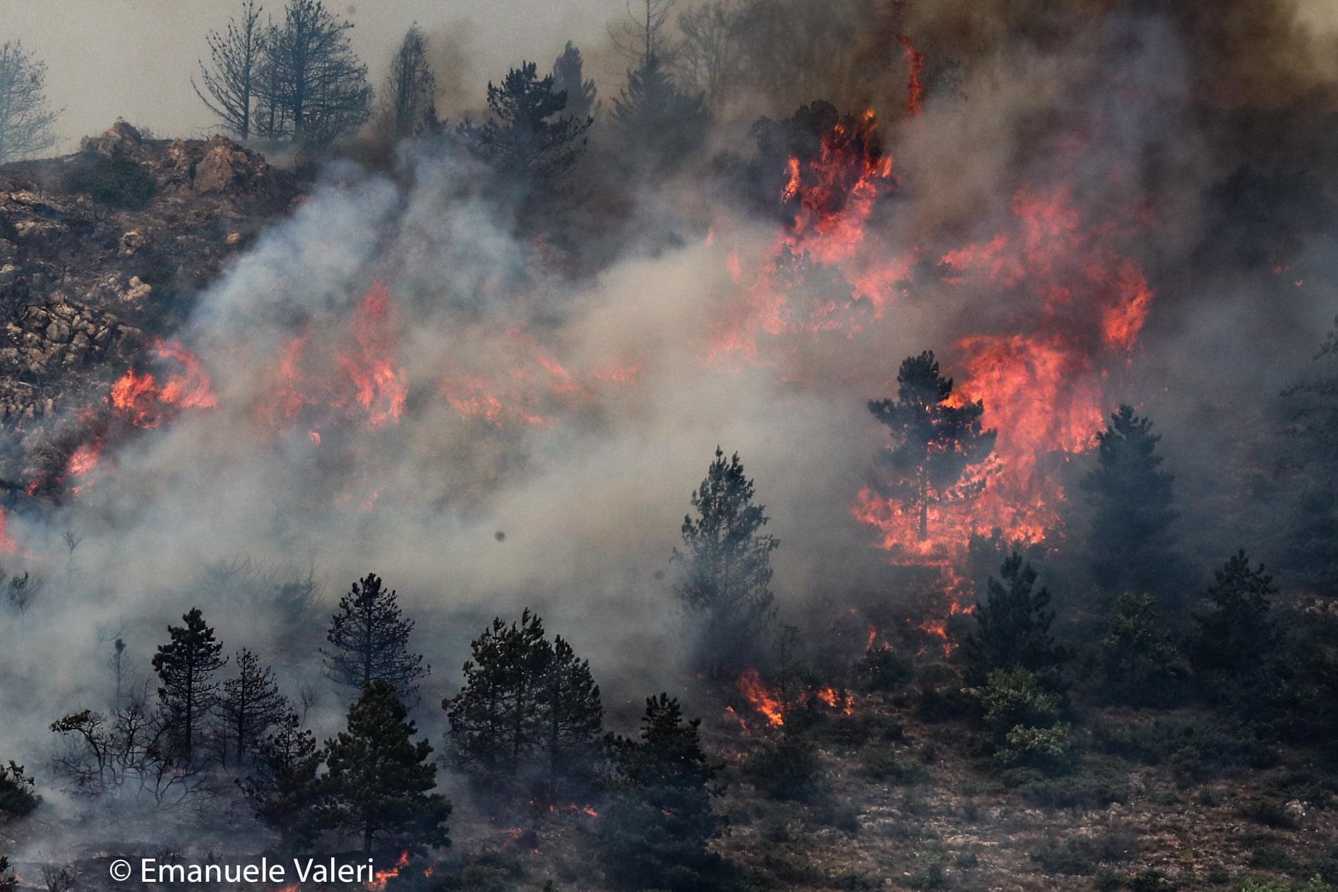 Incendio Monte Pettino