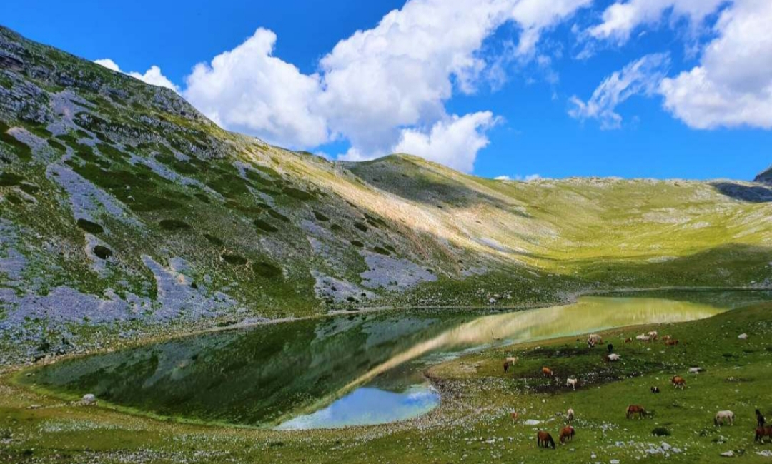 Proposta di Mariano Calisse per le aree montane del Lazio. Foto di Veronica Iovino