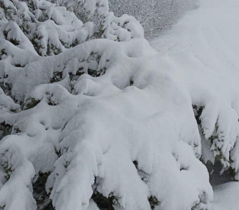 Neve in Appennino nelle prossime ore e gelate in pianura. Ecco il meteo